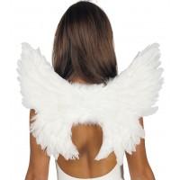 Ali da angelo