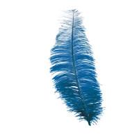 Piuma di struzzo blu