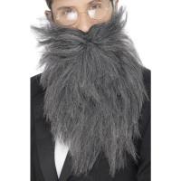 Barba e baffi lunghi grigi
